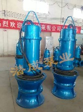 QZB系列700-100型轴流泵立式轴流泵厂家现货供应安装便捷使用简单图片