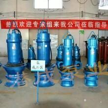 厂家直销900QZB-160潜水轴流泵卧式轴流泵田间上水排涝灌溉首选图片