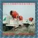 福建厦门福州龙岩南平供应车载式遥控除尘喷雾机车载式风送除尘喷雾机
