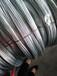 镀锌钢丝厂家供应镀锌钢丝