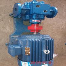 供应源鸿牌RCB3-0.8沥青保温泵齿轮泵图片