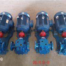 源鴻泵業大量生產瀝青保溫泵,齒輪泵RCB7-0.8系列泵圖片