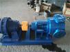 厂家直销NYP10-1.0高粘度转子泵,卫生转子泵