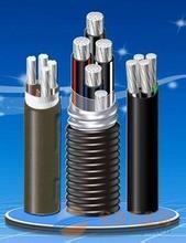 小猫电线电缆厂家YJHLV22(YJGLHV22)钢带铠装铝合金电缆