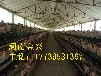 厂家直销阶梯式层叠式蛋鸡笼肉鸡笼育雏笼可定制