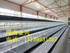 厂家直销阶梯式层叠式鸡笼可定制