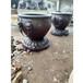青銅大缸帶虎頭銅雕缸鑄造純銅大缸廠家