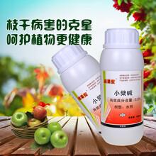 治疗柑橘溃疡病专用药靓果安厂家图片