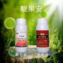草莓炭疽病专用杀菌剂大蒜油厂家江门图片
