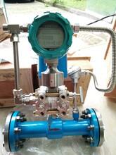 電池供電多參量變送器一體化流量計圖片