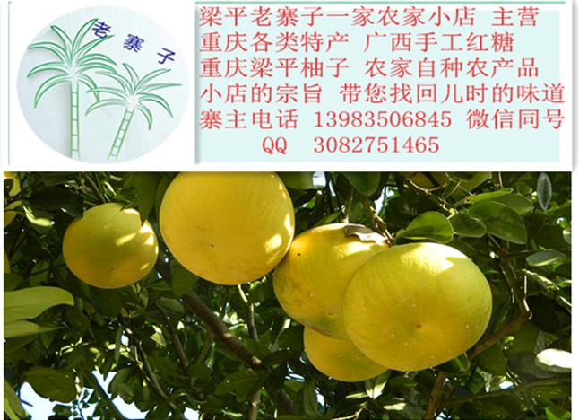 江苏老年人保健水果,营养价值高——梁平柚子,中国三大名柚