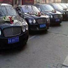 澄城县婚庆包车一般多少钱图片