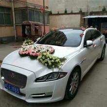 西安结婚车队怎么收费图片