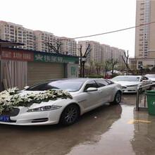 杨凌跑车出租网图片