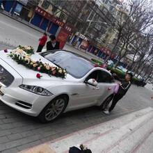 蒲城租婚车一般价格是多少图片
