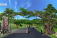 假树大门/水泥假树图片/大榕树价格