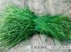 水稻割捆绳自走式水稻割捆机割捆绳打捆绳