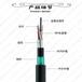 阜通牌GYTA53-48B1光缆单模光缆地埋光缆国标光缆