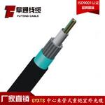 厂家GYXTS-6B1光缆架空光缆单模光缆图片