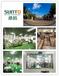 大连桑拓——国际先进生产工艺保证湿巾品质