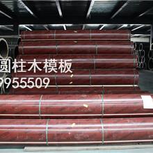 商洛圆柱模板厂家,圆柱子模板批发,弧形木模板,圆模板图片
