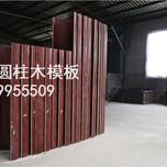 六盘水圆柱模板,圆柱模板厂家,圆柱模板价格,圆柱形模具供应图片
