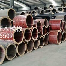 河南郑州圆柱模板,圆柱木模,圆柱形木模具厂家批发销售图片