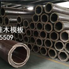 供应鹤壁圆模板,圆柱子模板,圆柱模板厂家建筑圆模板图片