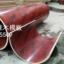 福州建筑圆柱木模,圆柱子模型,弧形木模板,厂家发货图片