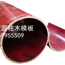 北京圆木模,木圆模,建筑圆模板厂家直销,价格优质图片