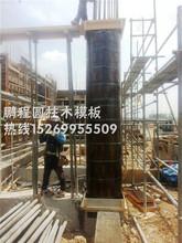 河南圆柱模板厂家生产圆柱子模板,定型圆柱模板,建筑圆模板图片