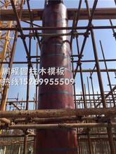 呼和浩特清水圆柱木模板供应,建筑圆模板图片