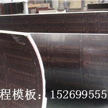 贵州圆柱模板,贵阳圆柱木模板厂家直销,重复周转率高