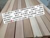 上海紅雪松價格優惠紅雪松園林木材