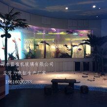 贵州水族箱工厂供应大型亚克力板材定制大型亚克力鱼缸工程