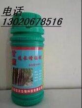 杭州生物肥料甘蔗速長增粗劑圖片