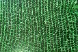 供应遮阳网遮光网安平遮阳网优质遮阳网生产厂家
