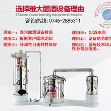 白酒蒸馏设备小型白酒蒸馏设备雅大家庭白酒蒸酒设备价格图片