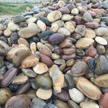贵州鹅卵石贵阳鹅卵石铺路石