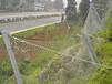山坡公路铁路防护网-正安山坡公路防护网-边坡防护网规格