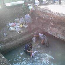 蔡甸开发区抽粪价格调节池生化池清淤公司