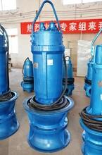 天津潜水轴流泵,轴流泵价格,900QZB型轴流泵,潜水轴流泵厂家图片
