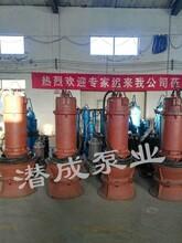 天津350,500,600潜水轴流泵,国内领先品牌-天津潜成泵业