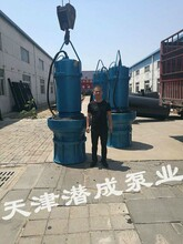 高品质350,500,600潜水轴流泵-潜水轴流泵专业生产厂家图片