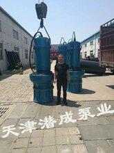 高品質350,500,600潛水軸流泵-潛水軸流泵專業生產廠家圖片