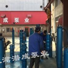 天津甘泉200QJR热水深井泵流量,扬程图片