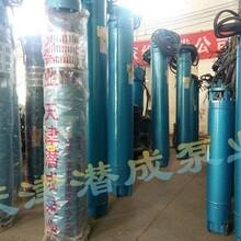天津甘泉200QJR,250QJR热水深井泵,大功率,高扬程热水深井泵厂家图片