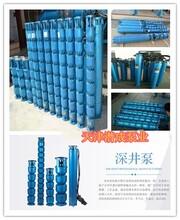 天津250QJ耐高温热水深井泵云南地区厂家直销-天津潜成泵业图片