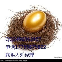 隆茂宏大宗现货产品详情图片