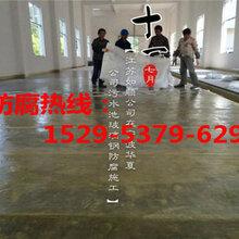 乐山水池玻璃钢防腐施工-1529-5379-629-